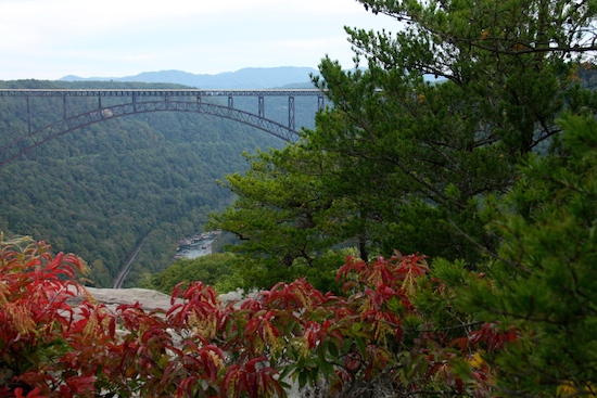 The view from Long View Trail ... 3.2 miles round trip. Nice views of the bridge and the gorge.