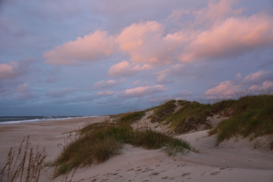 The dunes behind our campsite at sunrise.