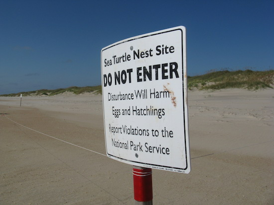 Posted sign marking a sea turtle nest.