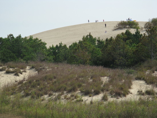 In the spirit of the Wright Bros, I was wishing I could go hang gliding off these dunes ...