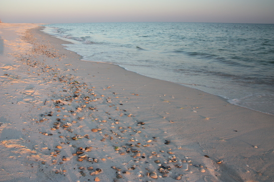 Beachcombing anyone? Pick up a shell or let the waves lap your feet as you relax.