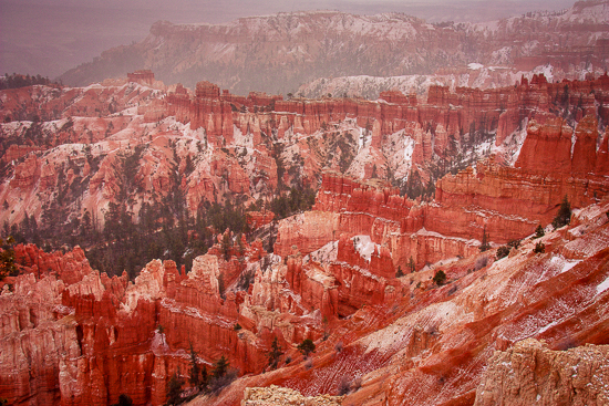 Snow? For our first stop in Bryce Canyon?