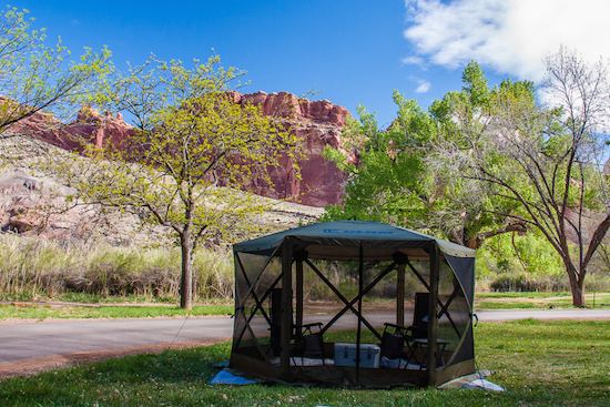 Camping at Fruita Campground, Capital Reef National Park - beside the Fremont Tiver, beneath the towering Navajo Sandstone cliffs.