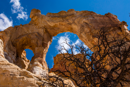 My favorite arch, Grosnever Arch, off Cottonwood Road.