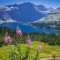 Despite Wildfires:  Glacier National Park