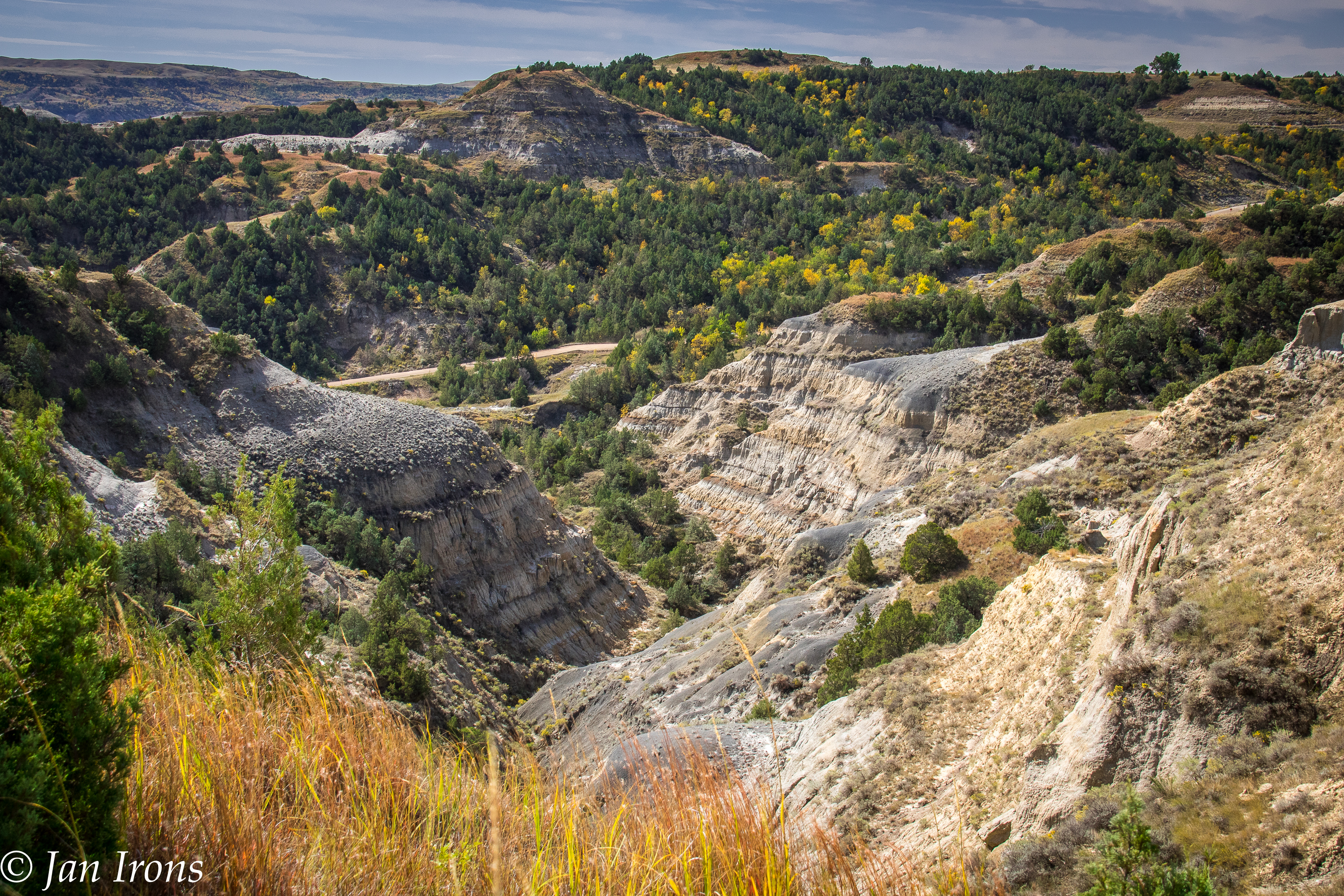 Theodore Roosevelt National Park - what a surprise - the canyons and wildlife were worth waiting for!