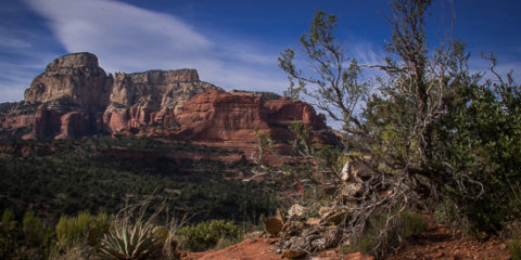 No Plans to Stop In Sedona?